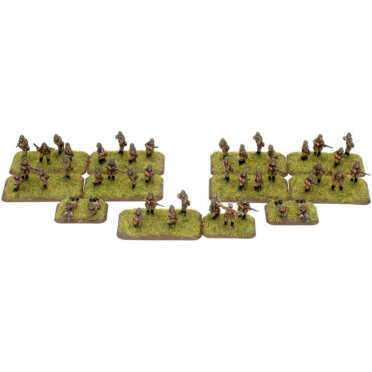 Polish Dismounted Kawalerii Company
