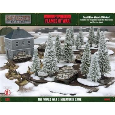 Small Pine Wood (Winter)