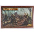 Age of Sigmar : Order - Glade Guard 0