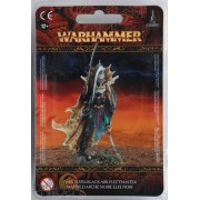 Age of Sigmar : Order - Black Ark Fleetmaster