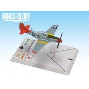P-51D Mustang (Ellington)