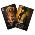 Flash Point: Fire Rescue Expansion : Veteran and Rescue Dog Pack 0