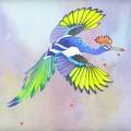 Evolution - Flight Expansion 3