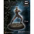 Batman - Lady Shiva and League of Shadows 2