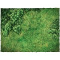 Terrain Mat Cloth - Fields - 120x120 2