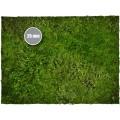 Terrain Mat PVC - Grass - 120x120 1