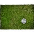 Terrain Mat PVC - Grass - 90x90 2