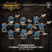 Stormguard pas cher