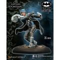 Batman - Captain Boomerang 0