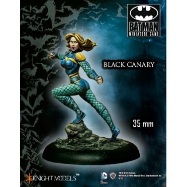 Batman - Black Canary