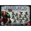 Blood Bowl : Team - The Skavenblight Scramblers 0