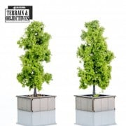 Shopping Mall: Planters with Trees