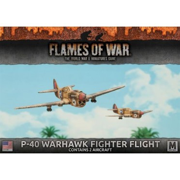P-40 Warhawk Fighter Flight