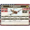 P-40 Warhawk Fighter Flight 5