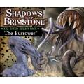 Shadows of Brimstone - Burrower XXL Enemy 0