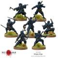 Test of Honour - Ninja of Iga 2