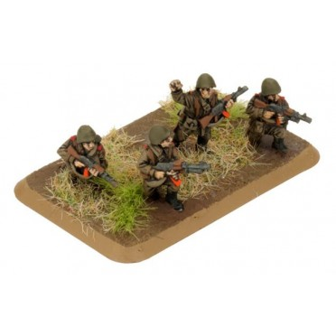 Team Yankee - Motor Rifle Platoon