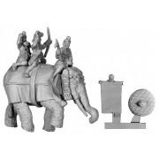 Indian Elephant with 3 Crew