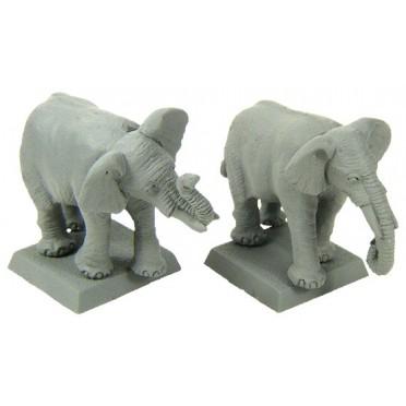 African Elephant (Bare)