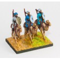 Arab: Camel rider with lance & shield 0