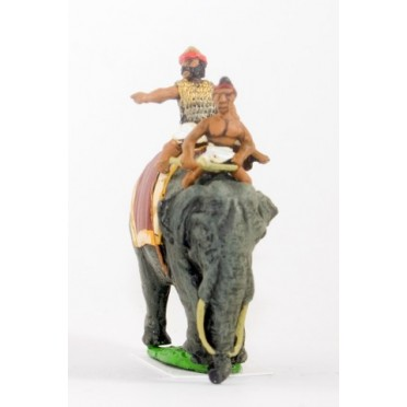 Classical Indian: General & driver mounted on elephant