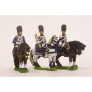 French: Command: Mounted Grenadier Officer, Standard Bearer & Trumpeter