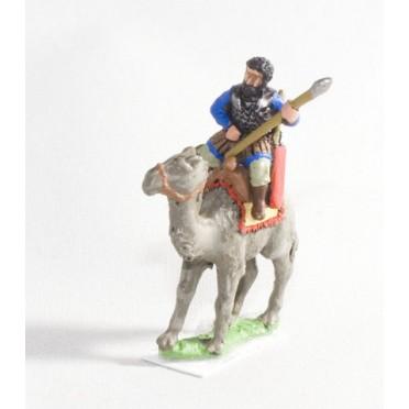Palmyran: Heavy Camelry