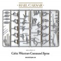 Hail Caesar - Ancient Celts: Celtic Warriors 2