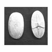 Ancient Spanish Shields (Plain) pas cher