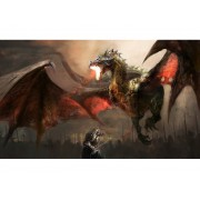 Playmats - Dragon's Last Flight